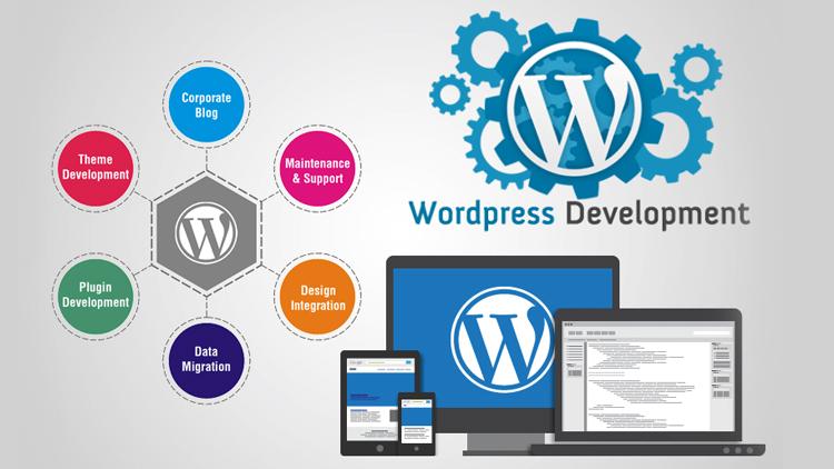 WordPress-Development3